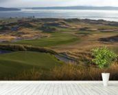 Chambers Bay, USA wall mural in-room view