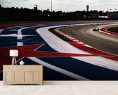 Circuit Of The Americas 2014 wall mural living room preview