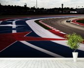 Circuit Of The Americas 2014 wall mural in-room view