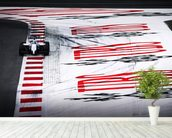 Felipe Massa Austria 2014 wallpaper mural in-room view