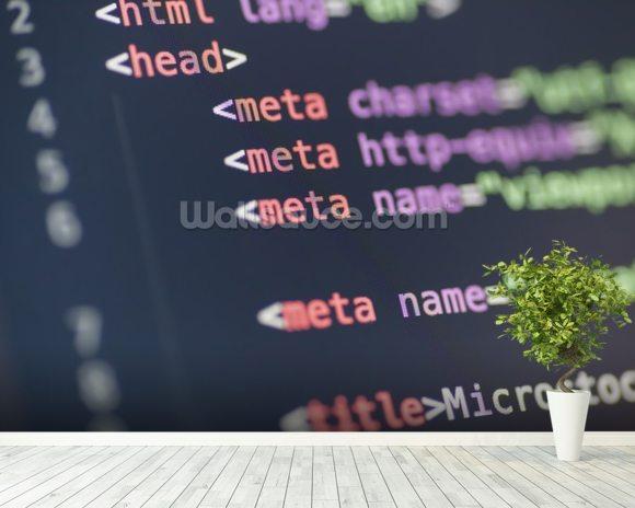 HTML Meta Tag Code On Computer Screen Wallpaper Mural Room Setting