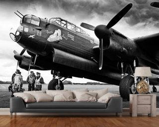Darren harbar aviation wall murals airplane wallpaper for Aviation wall mural
