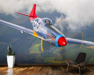 Darren Harbar Aviation Wall Murals Airplane Wallpaper Wallsauce USA