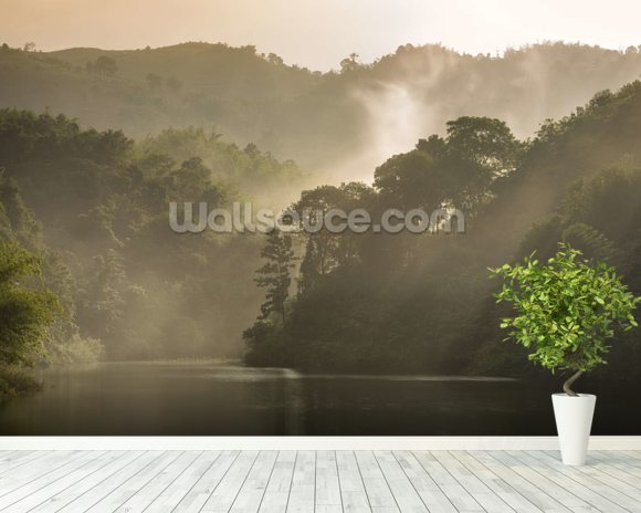 Misty Forest wall mural room setting