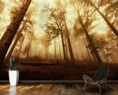 Pine Forest in the Mist mural wallpaper kitchen preview