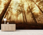 Pine Forest in the Mist mural wallpaper living room preview