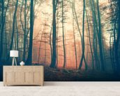 Mystic Forest wallpaper mural living room preview