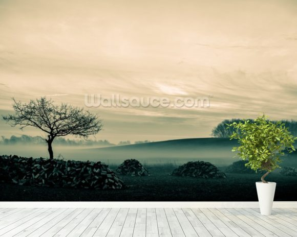Morning Mist wall mural room setting