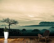 Morning Mist wall mural kitchen preview