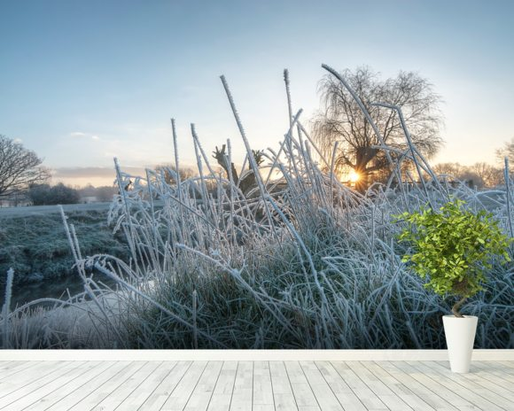 Frozen Grass in Richmond Park wall mural room setting