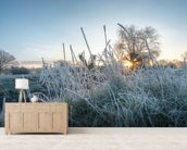 Frozen Grass in Richmond Park wall mural living room preview