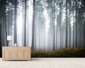 Morning Forest Mist mural wallpaper living room preview