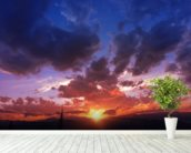 Mountain Range Sunset wall mural in-room view