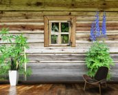 Wooden Chalet Window mural wallpaper kitchen preview