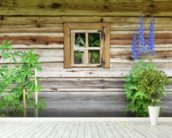 Wooden Chalet Window mural wallpaper in-room view
