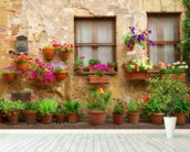 Stone Facade and Flowers, Italy wall mural in-room view