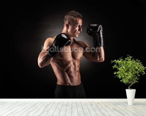 Boxer wall mural room setting
