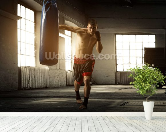 Boxing wallpaper mural room setting