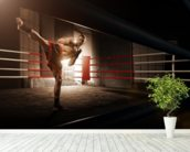 Kick Boxing wall mural in-room view