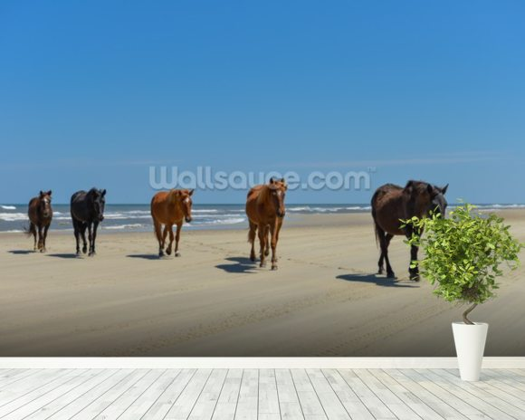 Wild Spanish Mustangs wall mural room setting