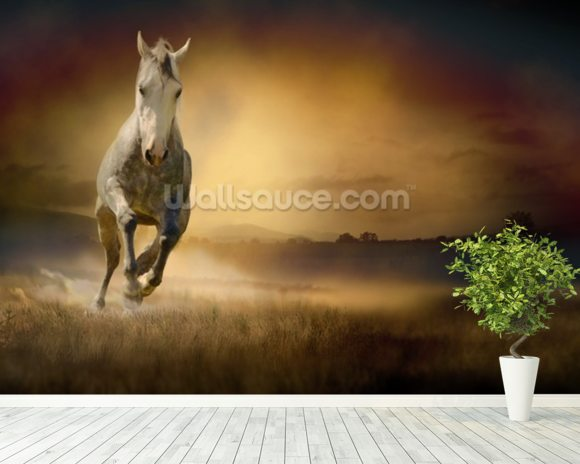 White Horse at Gallop wall mural room setting
