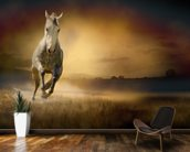 White Horse at Gallop wall mural kitchen preview