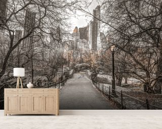 Central Park Winter Walk Wallpaper Wall Murals