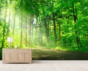 Forest Path in Sunshine wall mural living room preview