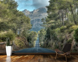 A Road Through the Majorcan Countryside wall mural