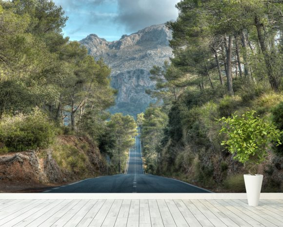 A Road Through the Majorcan Countryside wall mural room setting