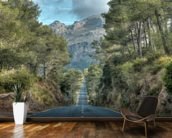 A Road Through the Majorcan Countryside wall mural kitchen preview
