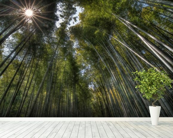 Arashiama Bamboo Forest wallpaper mural room setting