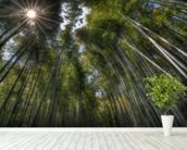 Arashiama Bamboo Forest wallpaper mural in-room view