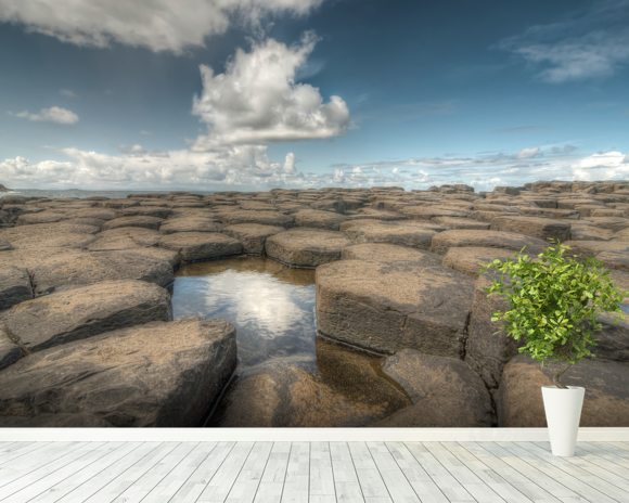 Giant's Causeway Water Reflection wall mural room setting