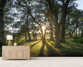 New Forest Sunset wall mural living room preview