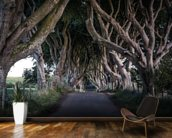 The Dark Hedges of County Antrim wall mural kitchen preview