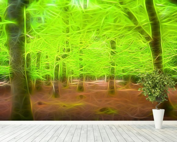 Light Beech Forest mural wallpaper room setting
