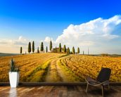 Tuscan Farmland & Cypress Trees mural wallpaper kitchen preview
