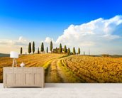 Tuscan Farmland & Cypress Trees mural wallpaper living room preview