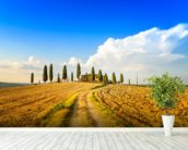 Tuscan Farmland & Cypress Trees mural wallpaper in-room view