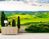 Rural Tuscany wallpaper mural living room preview