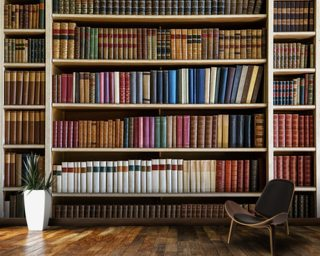 Old Books Bookcase Wall Mural Wall Murals Wallpaper