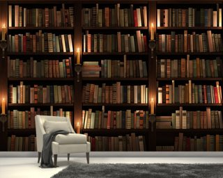 Bookcase and Candles Mural Wallpaper Wall Murals Wallpaper