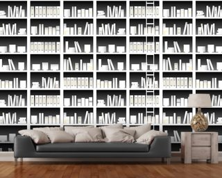 Books and Ladders wallpaper mural