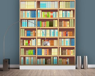 Colourful Bookcase