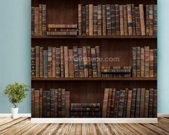 Old Books wall mural room setting