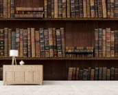 Old Books wall mural living room preview