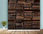 Horizontal Books mural wallpaper in-room view