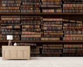 Horizontal Books mural wallpaper living room preview