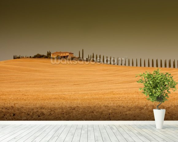 Tuscan View wall mural room setting